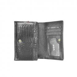 Moteriška odinė piniginė  GREGORIO SLL112 pilka